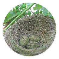 Money Nest Eggs Stickers