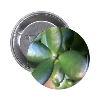 Money Plant Button