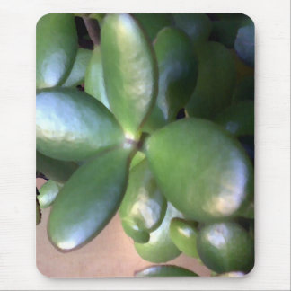 Money Plant Mouse Pad