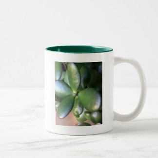 Money Plant Two-Tone Coffee Mug