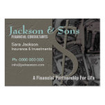 Money Specialist big Business Cards