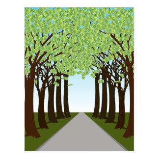 Money Tree Forest Path Postcard