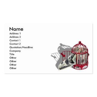 MoneyFlyingCoop092110, Name, Address 1, Address... Double-Sided Standard Business Cards (Pack Of 100)