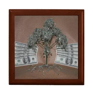 moneytree gift box