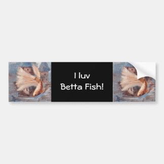 Mongo Betta Fish Bumper Sticker