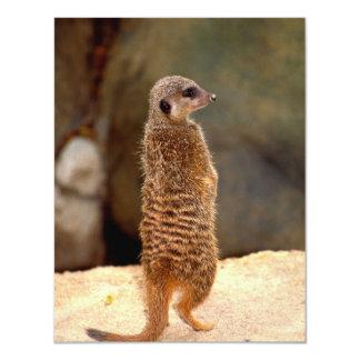 Mongoose10 4.25x5.5 Paper Invitation Card