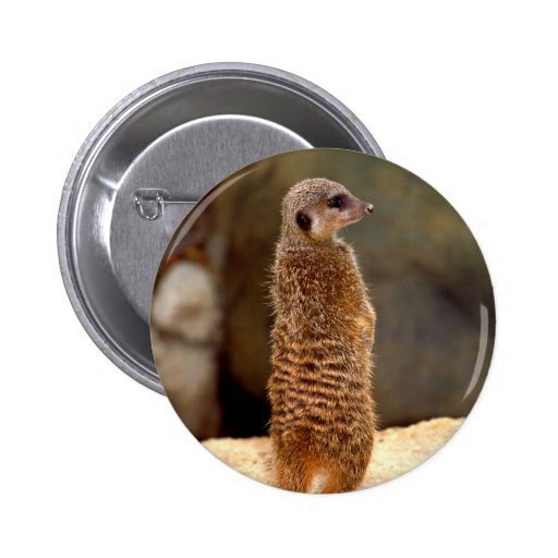 Mongoose10 Pin Redondo 5 Cm