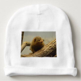 Mongoose a Tree Branch Baby Beanie