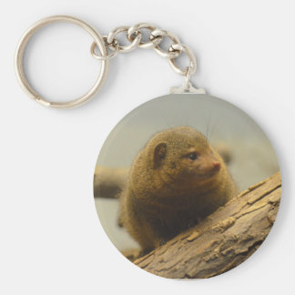 Mongoose a Tree Branch Basic Round Button Keychain