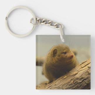 Mongoose a Tree Branch Keychain