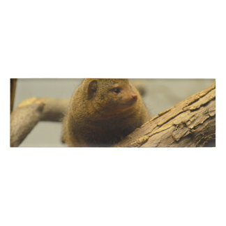 Mongoose a Tree Branch Name Tag