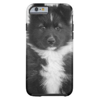 Mongrel Dog, Studio Shot Tough iPhone 6 Case