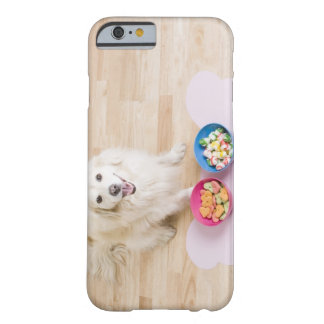 mongrel sitting in front of two bowls with dog barely there iPhone 6 case