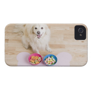 mongrel sitting in front of two bowls with dog iPhone 4 covers