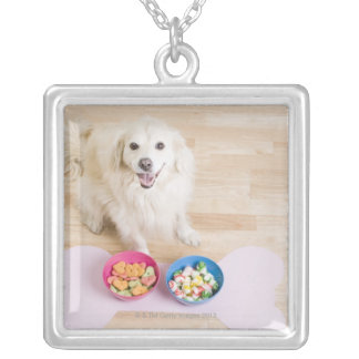 mongrel sitting in front of two bowls with dog silver plated necklace