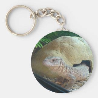 monitor lizard basic round button keychain