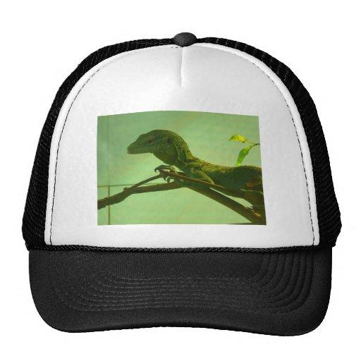 monitor verde del árbol gorros