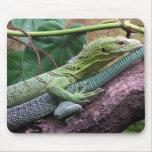 Monitor verde del árbol - prasinus del Varanus Alfombrilla De Raton