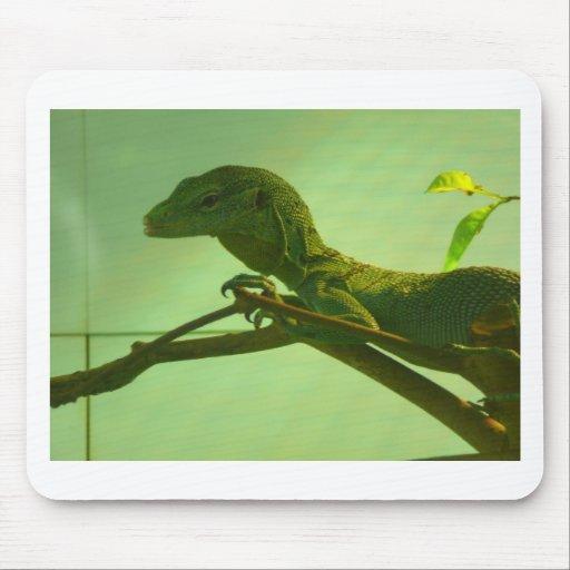 monitor verde del árbol tapete de ratón