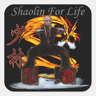 Monje del dragón de Shaolin Pegatina Cuadrada