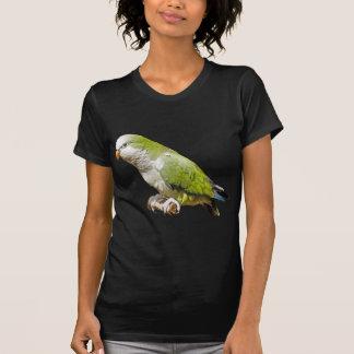 Monk Parakeet T Shirts