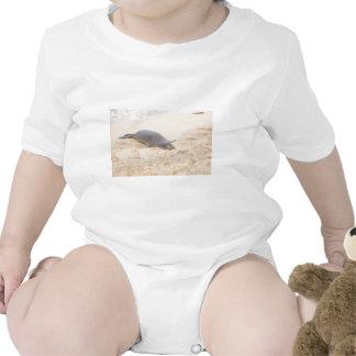 Monk Seal Sleeping Alone on Beach T Shirts