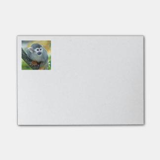 Monkey 004 post-it notes