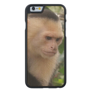 monkey-101 carved® maple iPhone 6 case