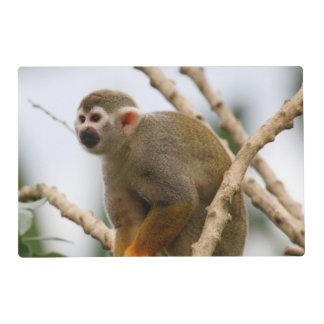 Monkey_2014_1201 Placemat