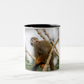 Monkey_2014_1201 Two-Tone Coffee Mug