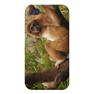 Monkey 4  iPhone 4 covers