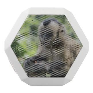 monkey-92 white boombot rex bluetooth speaker