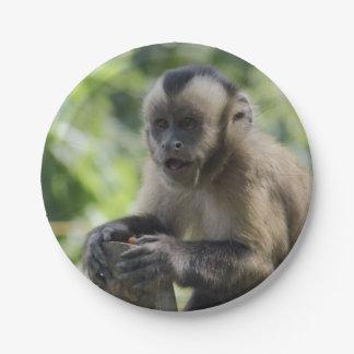 monkey-92 7 inch paper plate