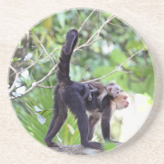 Monkey and Baby Drink Coasters