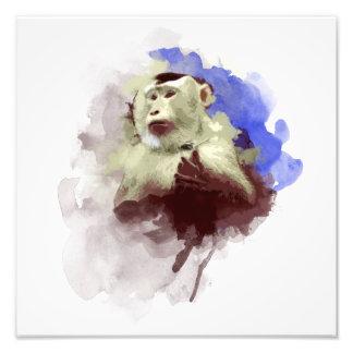 Monkey Art Photo