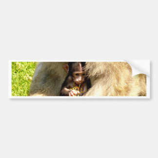 monkey baby love of mother bumper sticker