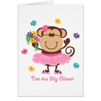 Monkey Big Sister Cards