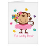 Monkey Big Sister Cards