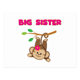Monkey Big Sister Postcard