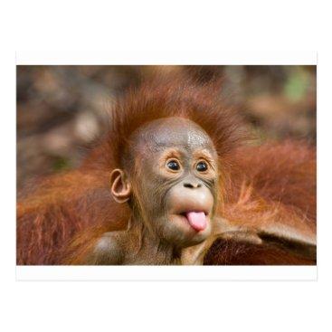 Professional Business Monkey business 2 postcard
