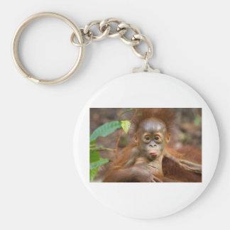 Monkey business 3 basic round button keychain