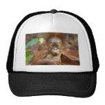 Monkey business 3 mesh hats