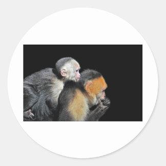 monkey business classic round sticker