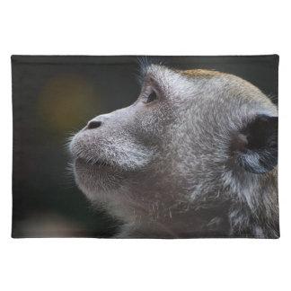 Monkey Cloth Placemat