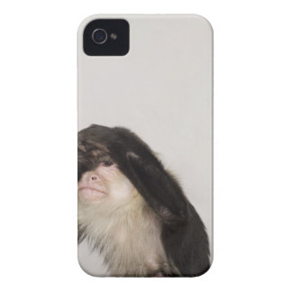 Monkey covering its eyes iPhone 4 Case-Mate case