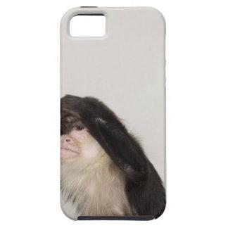 Monkey covering its eyes iPhone SE/5/5s case