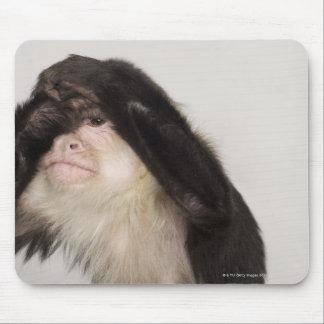 Monkey covering its eyes mouse pad