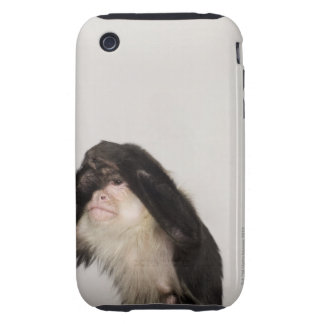 Monkey covering its eyes tough iPhone 3 cases