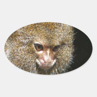 monkey deep thinker  learn from experience oval sticker
