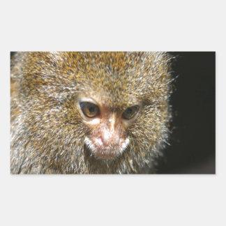 monkey deep thinker  learn from experience rectangular sticker